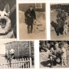 Архив фото. История клуба в Фотографиях, часть 2