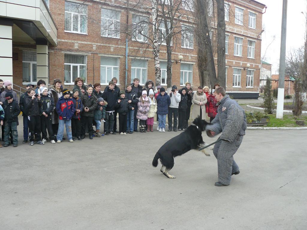Выступление в школе