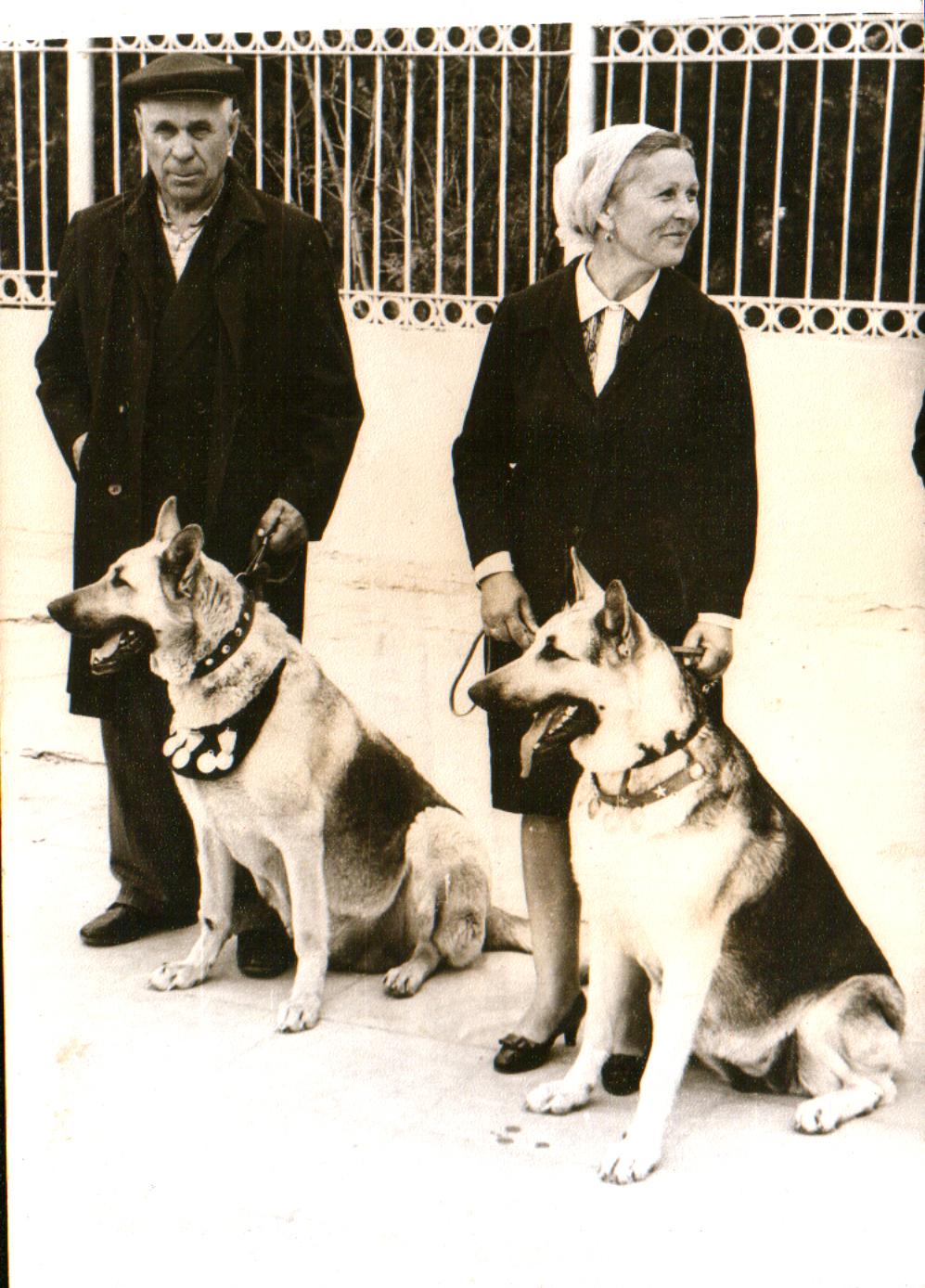 Гроза, вл. Шаврей В., и ее дочь Ява, вл. Грушецкая В., 1971 г