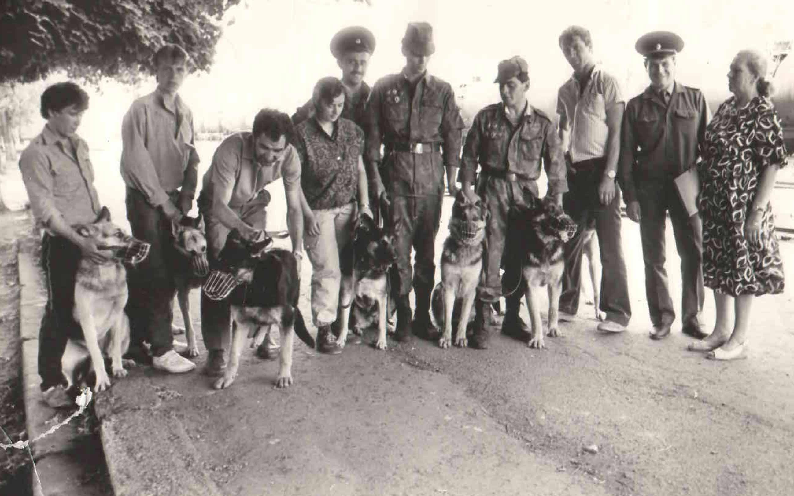 Передача собак в ПВ. 1990 г.