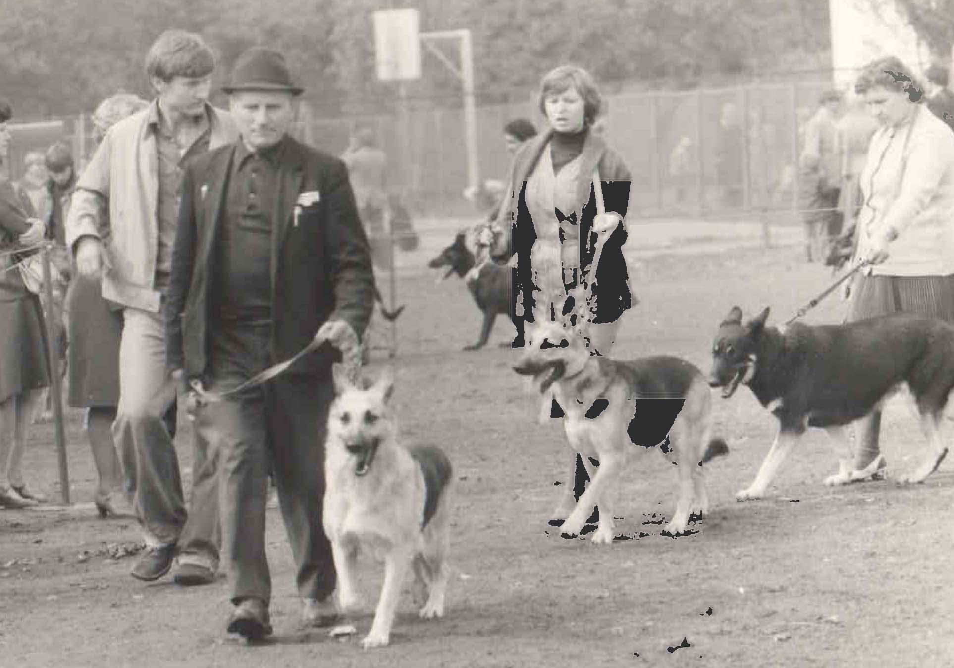 Ринг сук старшей группы ВЕО. 1979 год.