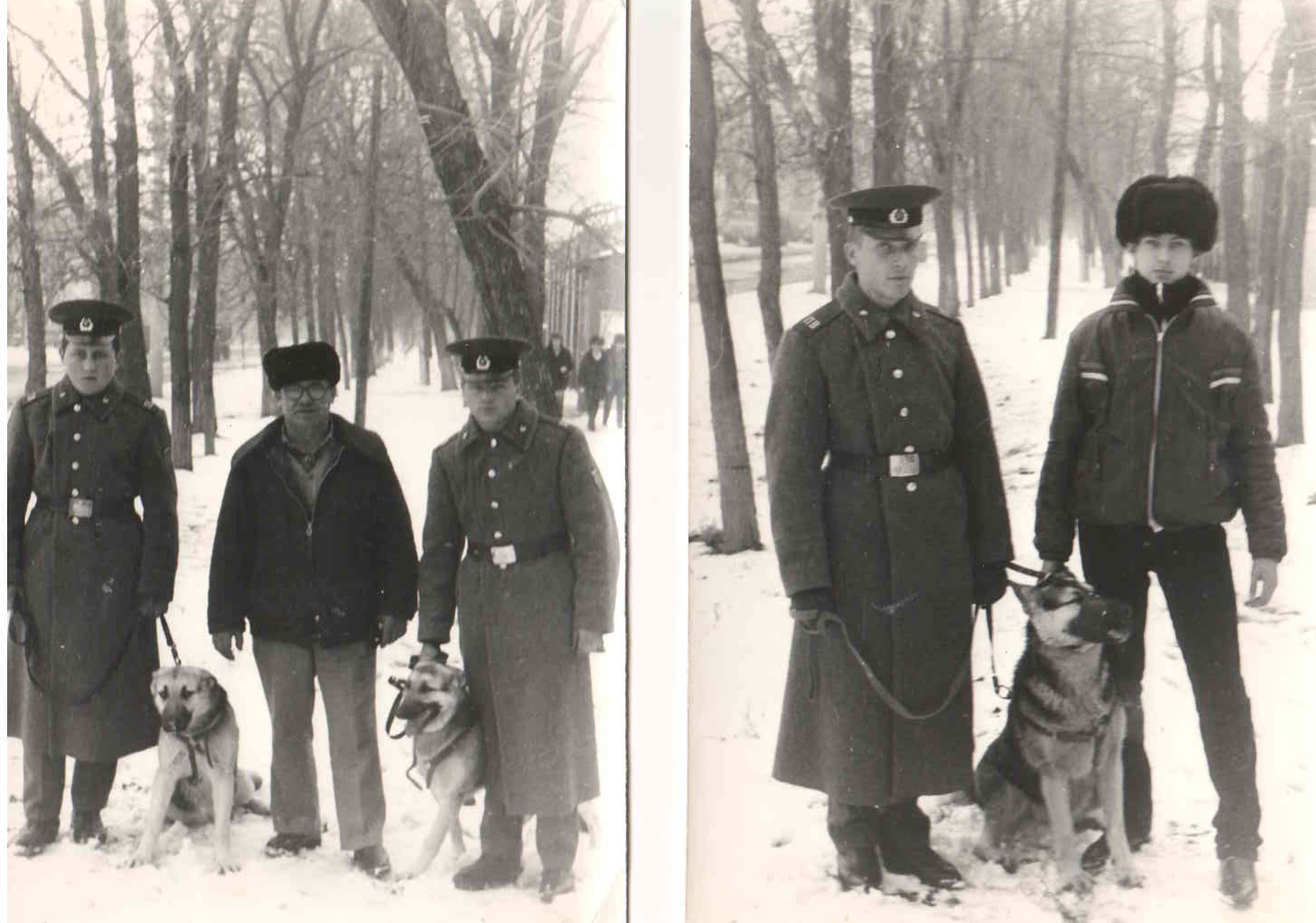 Члены клуба вырастили и передали собак в пограничные войска. 1984 год.