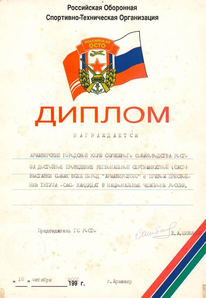Диплом. Армавир ГС РОСТО 2000 г.